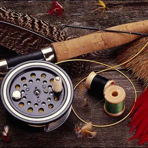 Охотничьи и рыболовные магазины Пено